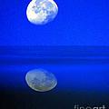 A Blue Moon. by Robert Kleppin