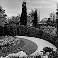 A Bobbink & Atkins Garden by Ben Schnall