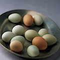 A Bowl Of Eggs by Romulo Yanes