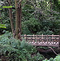 A Bridge In Central Park by John Wall