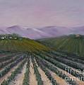 A California Morning by Darice Machel McGuire