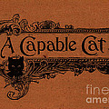 A Capable Cat Sign by Pierpont Bay Archives