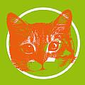 A Cat by D H Carter