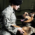 A Caucasian, Female Air Force Security by Stacy Pearsall