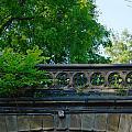 A Central Park Bridge by Kathrine R Mitchell