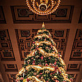 A Christmas Tree At Union Station by Lynn Sprowl