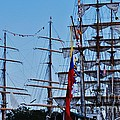A Collection Of Masts In Baltimore by Marcus Dagan