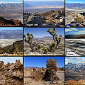 A Collection Of Views by David Salter