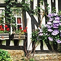 A Cottage In Normandy by Mary Ellen Mueller Legault