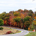 A Country Road In Autumn by Kay Novy