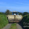 A Country Road by Joe Cashin