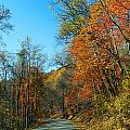 A Country Road by Skip Willits