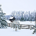 A Country Winter by Christopher Nelson