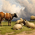A Cow And Five Sheep by Thomas Sidney Cooper
