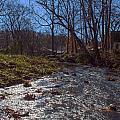 A Creek Runs Though It by Thomas Sellberg