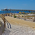 A Day At The Beach by Tom Gari Gallery-Three-Photography