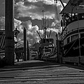 A Day At The Dock by Tom Slater