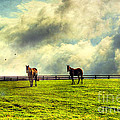 A Day In Kentucky by Darren Fisher