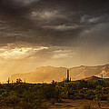 A Desert Monsoon Sunset  by Saija  Lehtonen