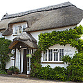 A Devonshire Cottage by Venetia Featherstone-Witty