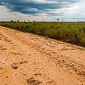 A Dirt Road In The Plains by Jess Kraft