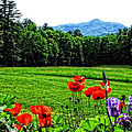 A Distant Mount Ascutney by Mike Martin