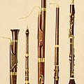 A Dulcian, An Oboe, A Bassoon by Alfred James Hipkins