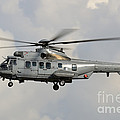 A Eurocopter As532 Cougar Of The Royal by Remo Guidi