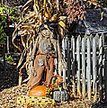 A Fall Scarecrow Display by Kenny Francis