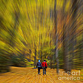 A Fall Stroll Taughannock by Jerry Fornarotto