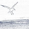A Fine Flight by Karol Livote