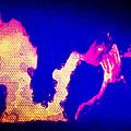 A Fire In Ferguson by Michelle Dallocchio