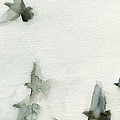 A Flock Of Pigeons 1 Watercolor Painting Of Birds by Beverly Brown