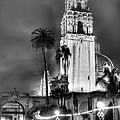 A Foggy Night On Balboa by Robert Nadel