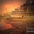A Foggy Sunrise by Tara Turner