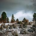 A Fresh Covering Of Snow by Ted Griffith