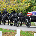 A Funeral In Arlington by Cora Wandel
