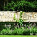 A Garden Far Away by Constance Woods