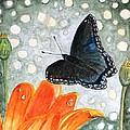 A Garden Visitor by Angela Davies