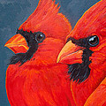 A Gathering Of Cardinals by Rebecca Ives