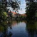 A Glimpse Through The Trees - Bruges Belgium by Georgia Mizuleva
