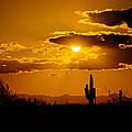 A Golden Southwest Sunset  by Saija  Lehtonen