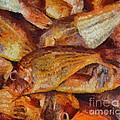 A Good Catch Of Fish by Dragica  Micki Fortuna