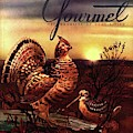 A Gourmet Cover Of A Turkey by Henry Stahlhut
