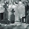 A Graveyard by Don Hammond
