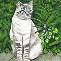 A Grey Cat At A Garden by Jingfen Hwu