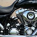 A Harley In Arlington by Cora Wandel