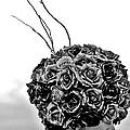 A Hat Of Roses by Tom Gari Gallery-Three-Photography