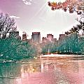 A Haze Over Central Park by Susi Perla