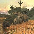 A Herd Of Elephants By Moonlight by Friedrich Wilhelm Kuhnert